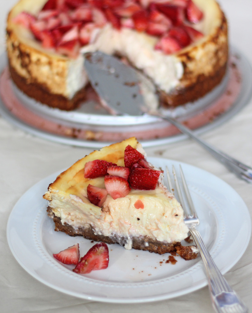 Cheesecake Recipe Piece